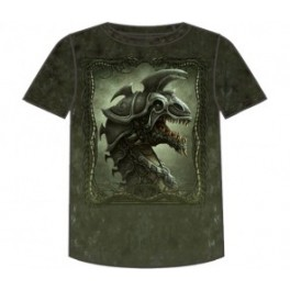 FANTASY - BATTLE DRAGON - TS