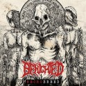BENIGHTED - Necrobreed - LP Noir