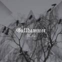 GALLHAMMER - The End - CD Fourreau