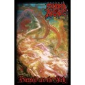 MORBID ANGEL - Blessed Are The Sick - Drapeau