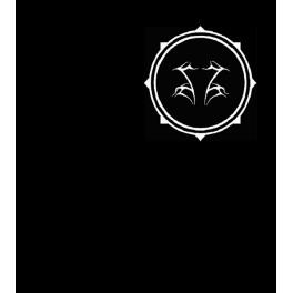 SHINING - Logo Pocket / WeAre The Enemy - TS
