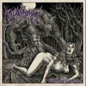 THE BLACK SORCERY - Wolven Degrade - CD