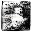 ALGO BLAST COMPILATION - Vol 1 : A Shivering Natur - CD