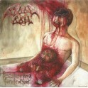 BLOODBOIL - Festering Fornication - CD